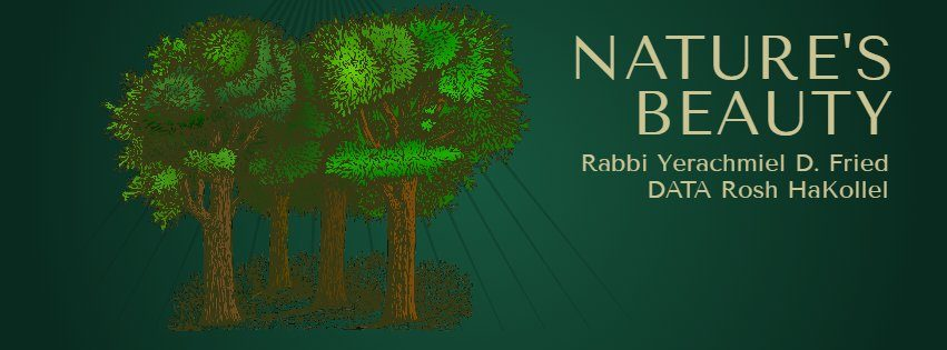 Ask the Rabbi: Nature's Beauty 1