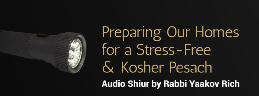 LISTEN: Preparing Our Homes for a Stress-Free & Kosher Pesach. 1
