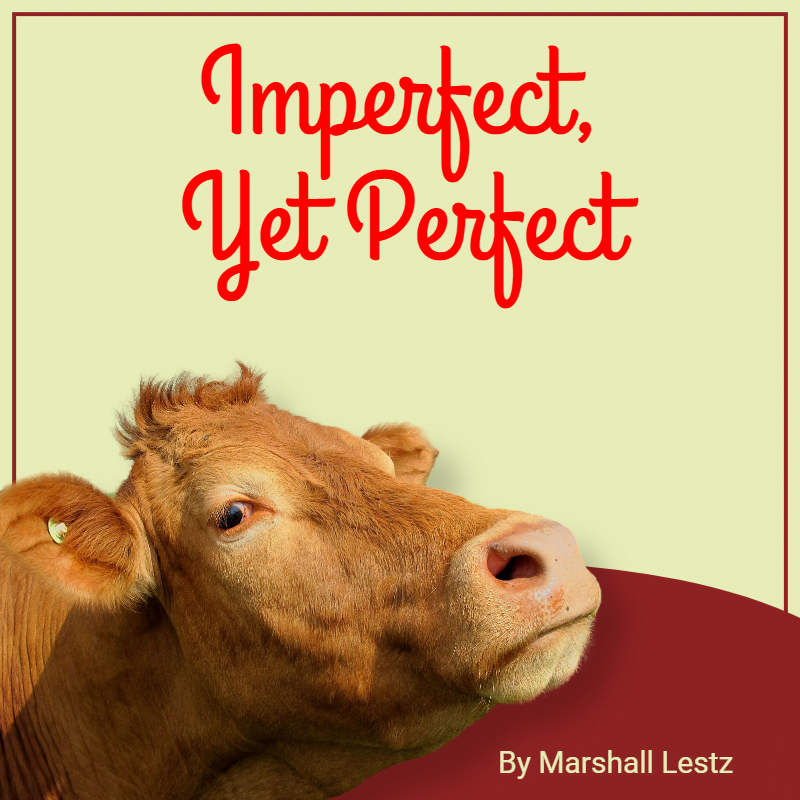 Imperfect, Yet Perfect 1