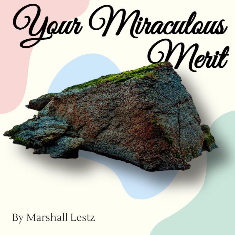 Your Miraculous Merit 1