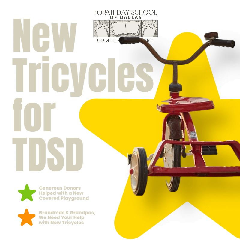 New Tricycles for TDSD 1