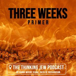 """The Thinking Jew Podcast: Ep. 35 A """"Three Weeks"""" Comprehensive Primer"""
