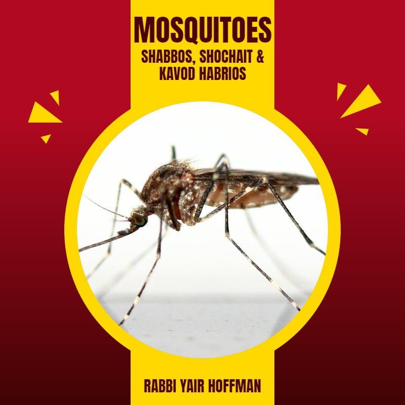 Mosquitoes: Shabbos, Shochait & Kavod HaBrios 1