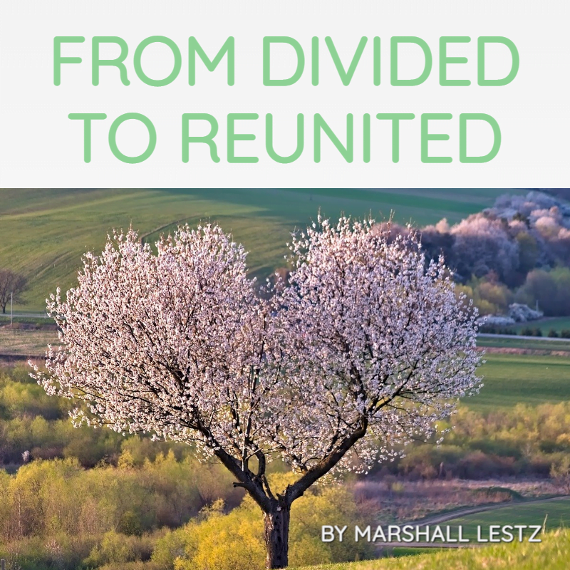 Rebuilder Series: From Divided To Reunited. By Marshall Lestz
