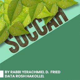 Ask the Rabbi: Succah. By Rabbi Yerachmiel D. Fried