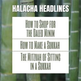 Halacha Headlines: Sukkos I – How to Shop for the Daled Minim – How to Make a Sukkah – The Mitzvah of Sitting in a Sukkah