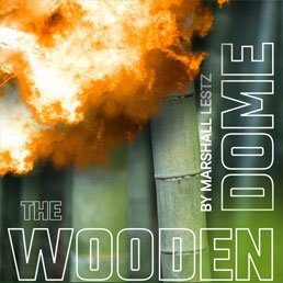 Rebuilding Series: The Wooden Dome. By Marshall Lestz